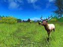 Screenshot 3 of Hunting Unlimited 2010