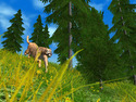 Screenshot 8 of Hunting Unlimited 2010