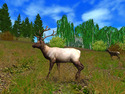 Screenshot 4 of Hunting Unlimited 2010