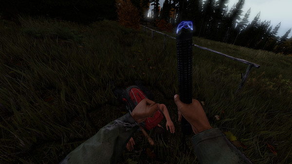 Screenshot 3 of DayZ