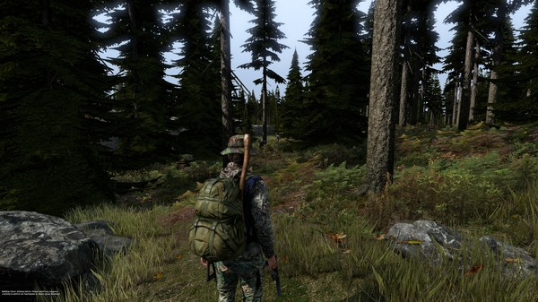 Screenshot 5 of DayZ