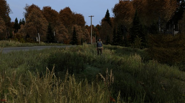 Screenshot 6 of DayZ