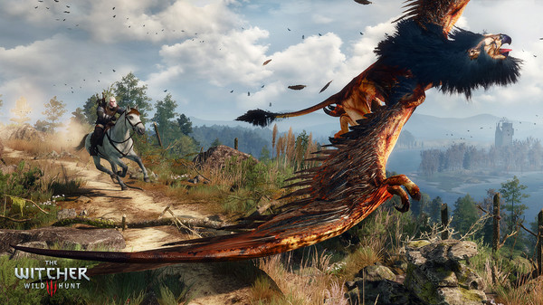 Screenshot 6 of The Witcher® 3: Wild Hunt