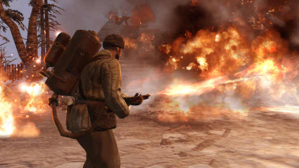 Screenshot 11 of Company of Heroes 2
