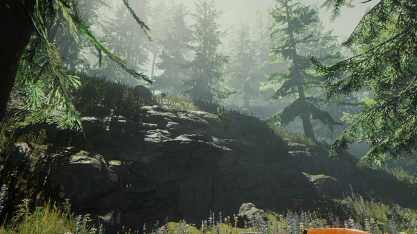 Screenshot 13 of The Forest
