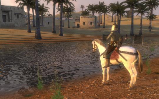 Screenshot 5 of Mount & Blade: Warband