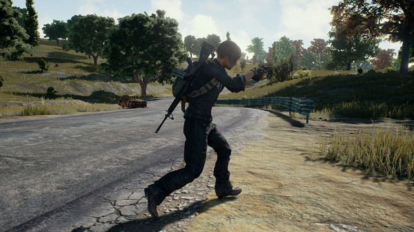 Screenshot 5 of PLAYERUNKNOWN'S BATTLEGROUNDS