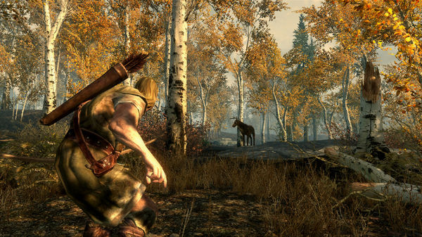 Screenshot 5 of The Elder Scrolls V: Skyrim